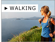 Walking auf SP24.com